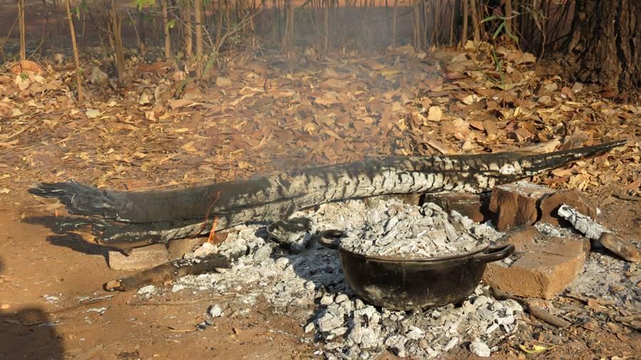 Mataranka campfire