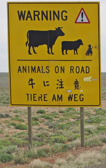 Sign - Animals on road
