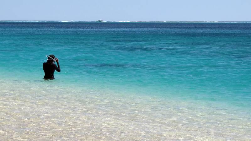 Coral Bay snorkelling