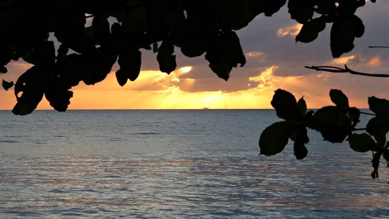 Sunset at Wonga Beach Caravan Park