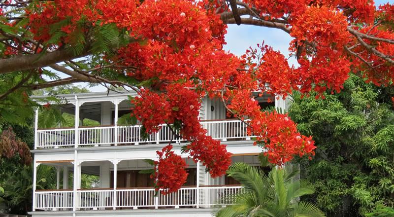 Port Douglas – amazing Four Mile Beach