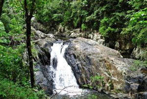 Cairns Attractions - Crystal Cascades