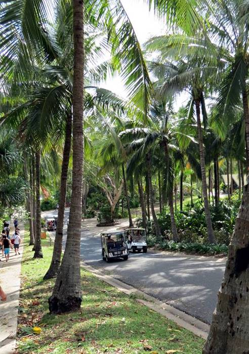 Hamilton Island - moving around is best with buggies