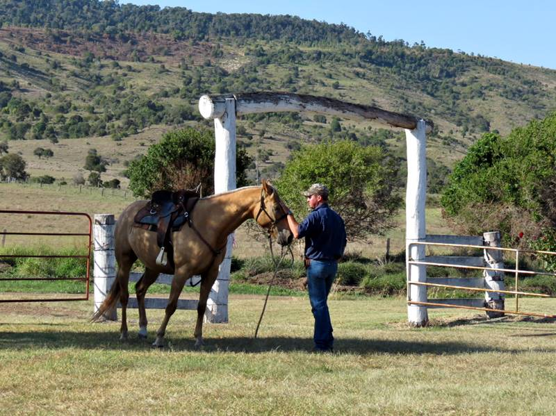 Tony with his horse at Moonford homestead