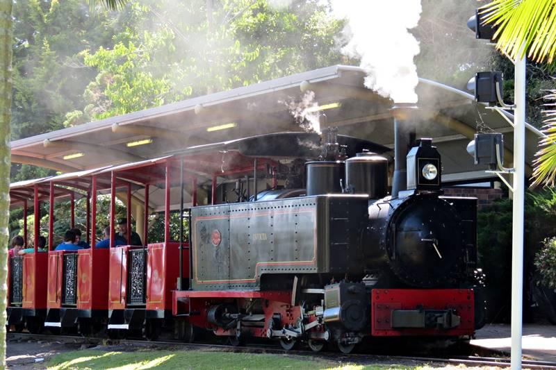 Old train in Budaberg Botanic Gardens