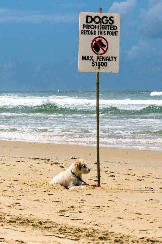 Funny sign at Surface Paradise in Gold Coast