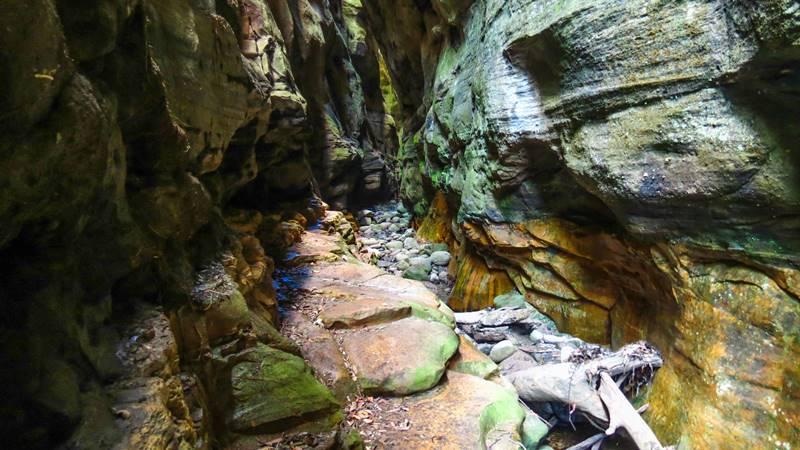 Carnarvon National Park - Mickey Gorge