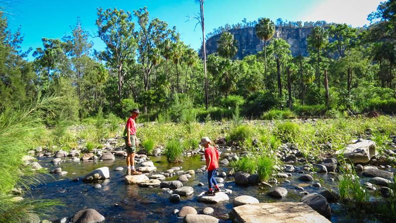 Carnarvon Gorge National Park - Main Gorge Walk
