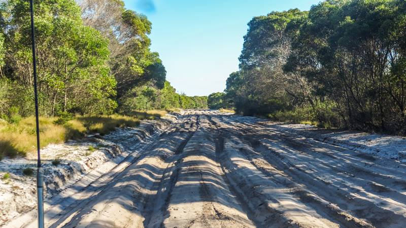 Bribie Island National Park - deep sand section on inland track