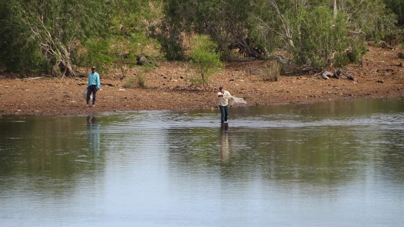 The locals are not scared of crocs in the shallow waters while casting the net